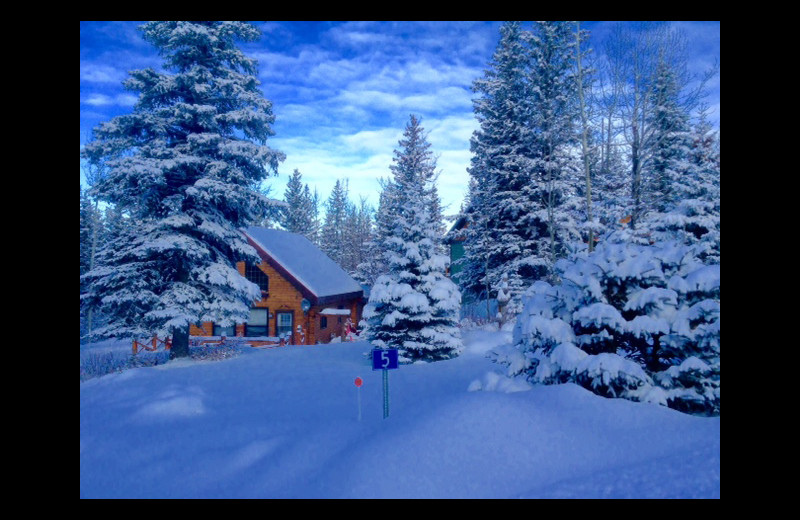 Winter view of Gingerbread Cabin.