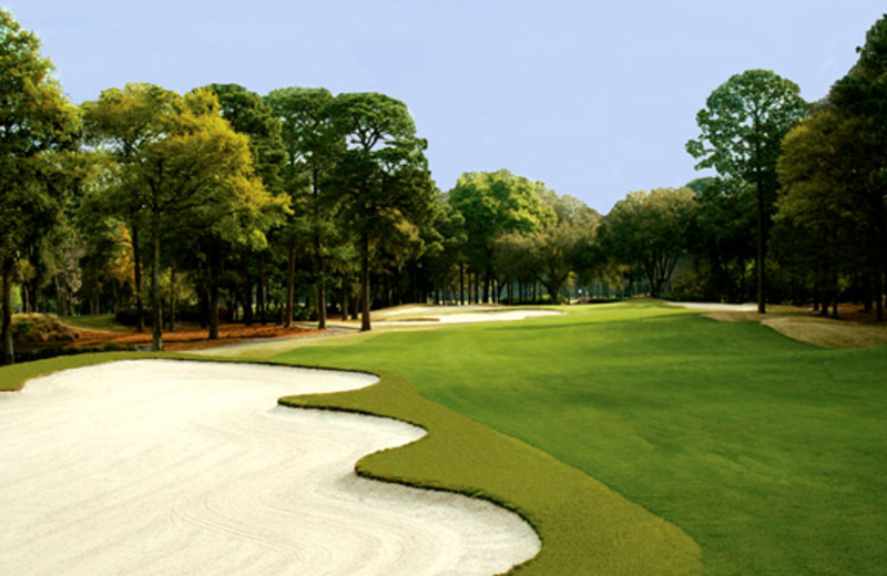 Golf Course at The Westin Hilton