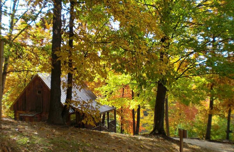 The Smoky Watkins cabin at Rock Creek.