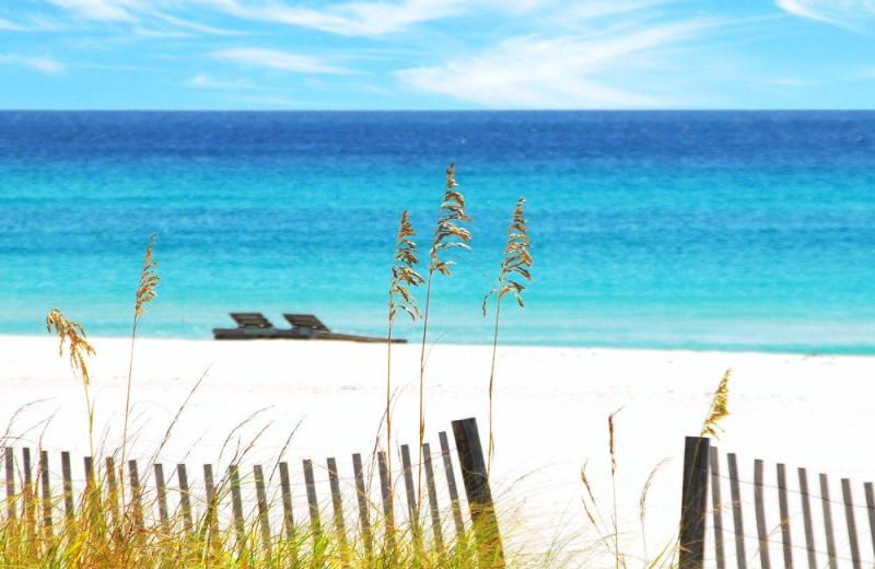 Beach view at Alicia J. Hollis, Realtor.