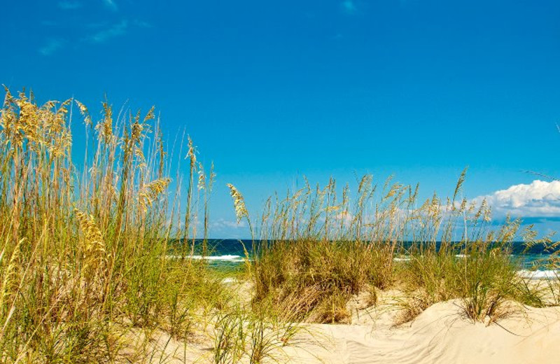 Beach View at Hatteras Realty