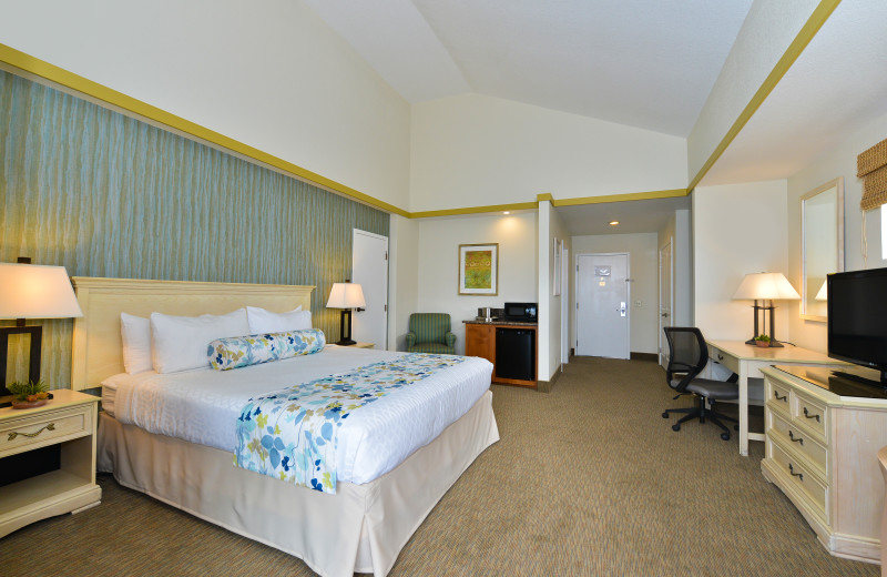 Guestroom at Best Western Plus Shelter Cove Lodge
