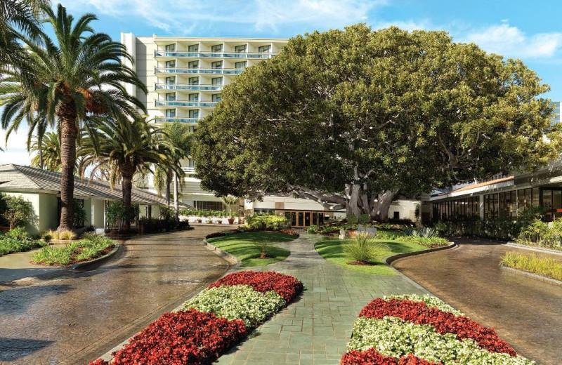 Exterior view of Fairmont Miramar Hotel & Bungalows.