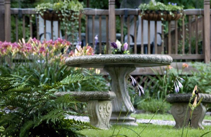 Garden at Folkestone Inn B&B.