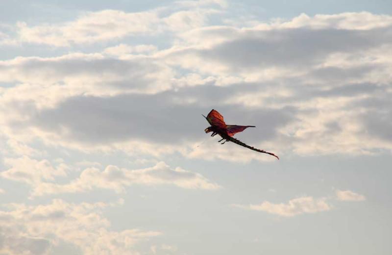 Flying a kite at Bayshore Resort.