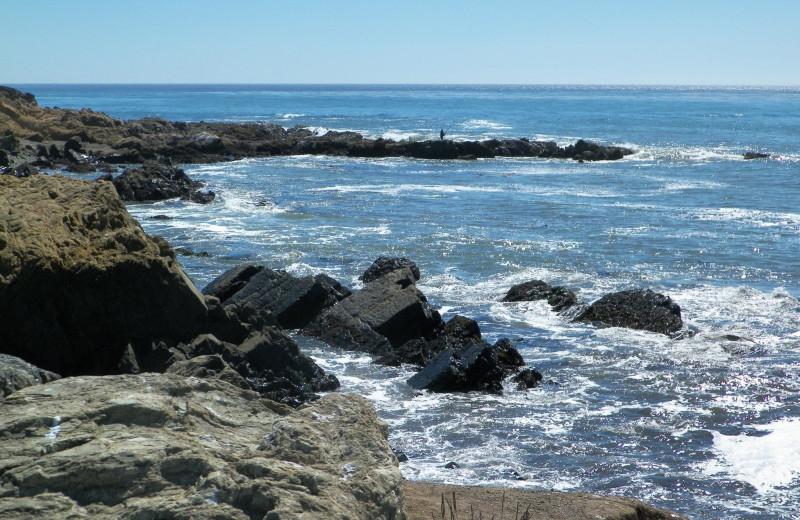 California shoreline near Cambria Pines Lodge.