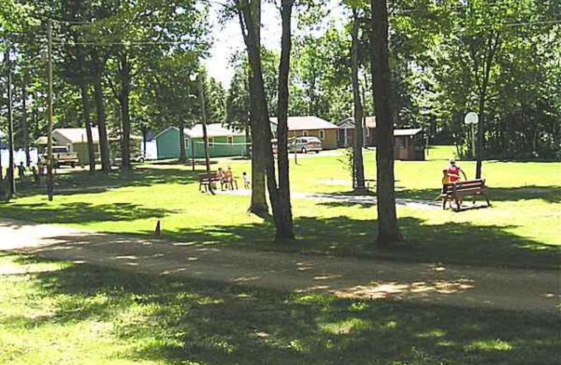 Park Area at Kafka's Resort