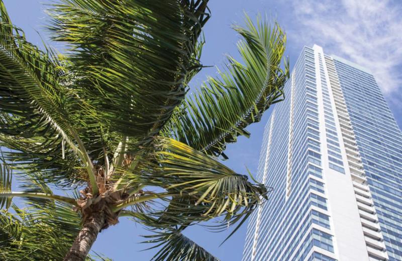 Exterior view of Four Seasons Hotel Miami.