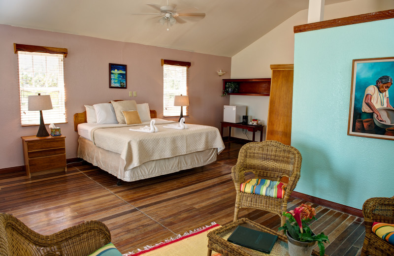 Guest room at Black Bird Caye.