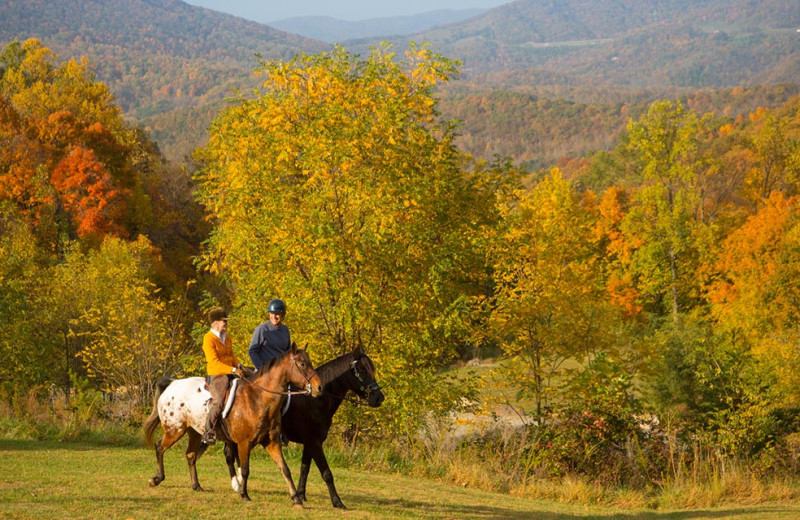 Horseback riding at House Mountain Inn.