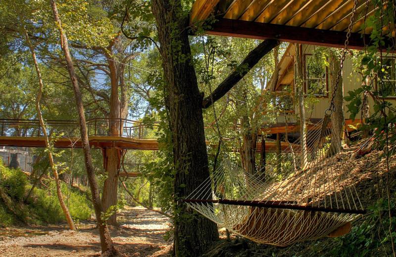 Hammock at River Road Treehouses.