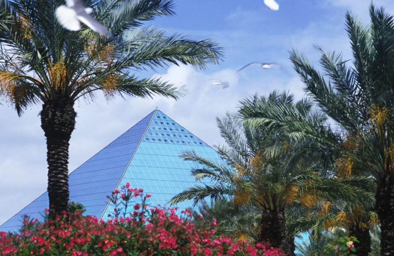 Rainforest pyramid at Moody Gardens Hotel Spa & Convention Center.