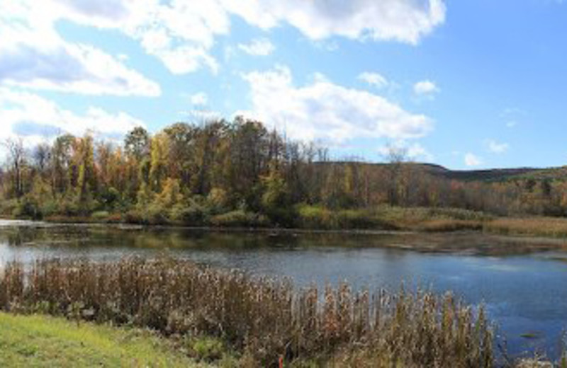 Beautiful Pond View at Yankee Inn
