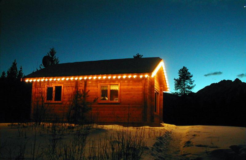 Pine cabin at night at Mica Mountain Lodge & log cabins