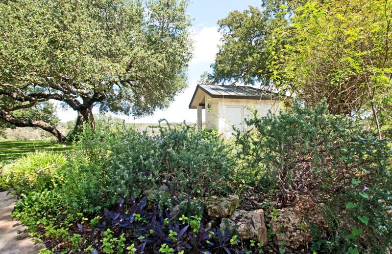 Garden at Paniolo Ranch.