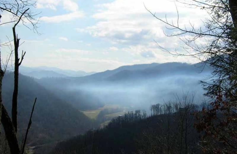 View at Deep Creek Cabins