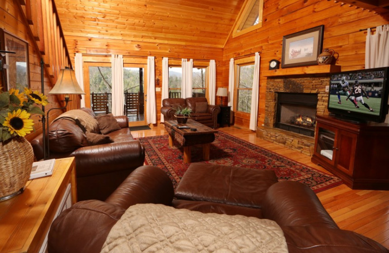 Living room at Little Valley Mountain Resort