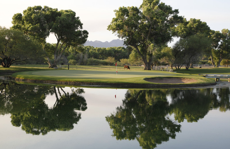 Golf course at Tubac Golf Resort.