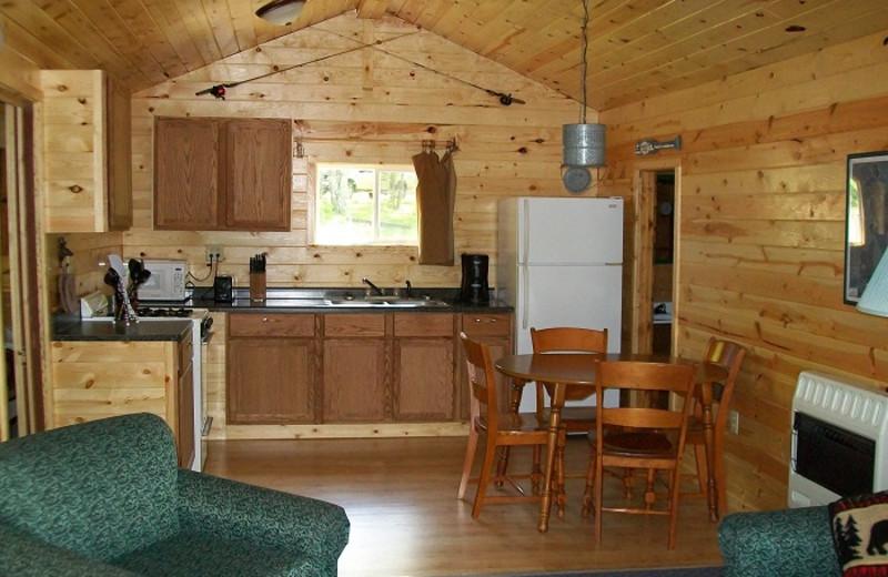 Cabin kitchen at Cedar Point Resort.