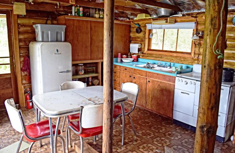 Cabin kitchen at The Alaska Adventure Company.