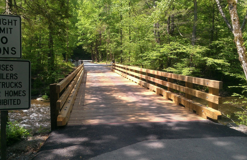 Wooden bridge at Cabin Fever Vacations.