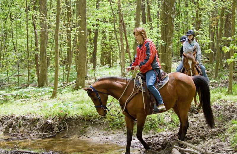 Horseback riding at The Glen Eden Resort.