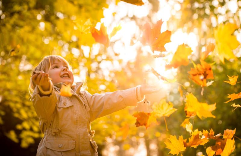 Kid in leaves at Mount Battie Motel.