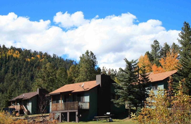 Cabin exterior at Antler Ridge Cabins.