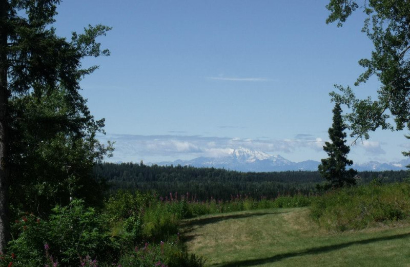 View from Hungry Moose Bed and Breakfast.