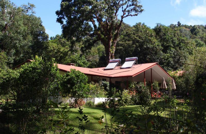Exterior view of Hostal Cielito Sur Bed & Breakfast.
