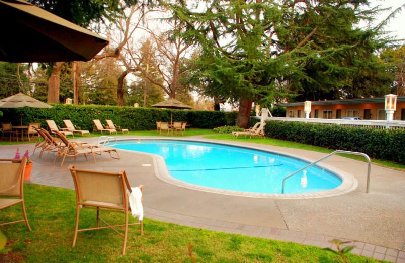 Outdoor Pool at El Bonita Motel