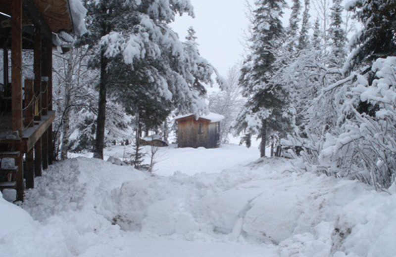 Exterior winter cabin view at Heston's Lodge.