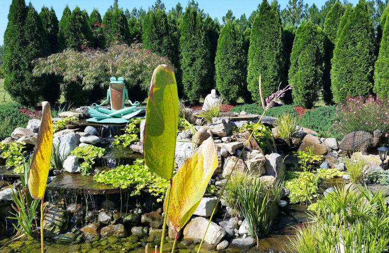 Garden at Cape Fear Vineyard and Winery.