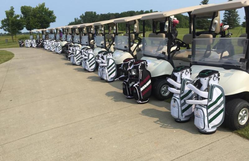 Golf carts at Sawmill Creek Golf Resort & Spa.