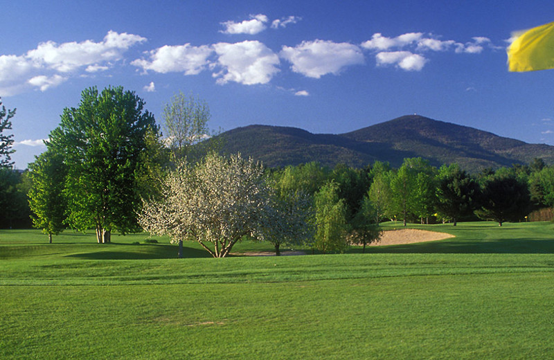 Golf near Eastern Slope Inn Resort.