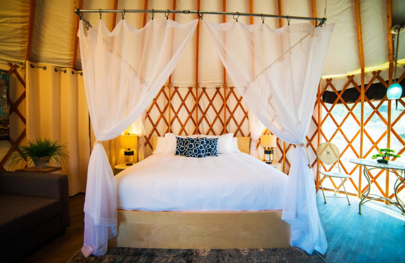 Guest bed at Escalante Yurts.