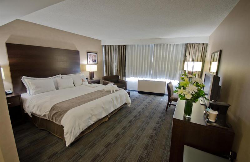 Guest room at Radisson Winnipeg.