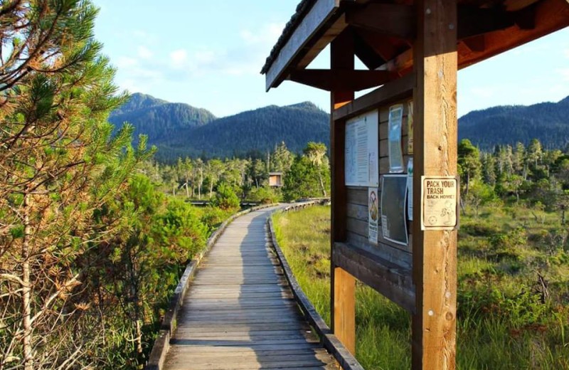 Boardwalk at Island Point Lodge.