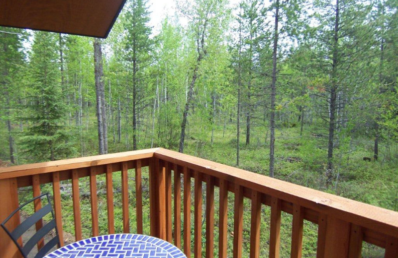 Patio View at Historic Tamarack Lodge and Cabins