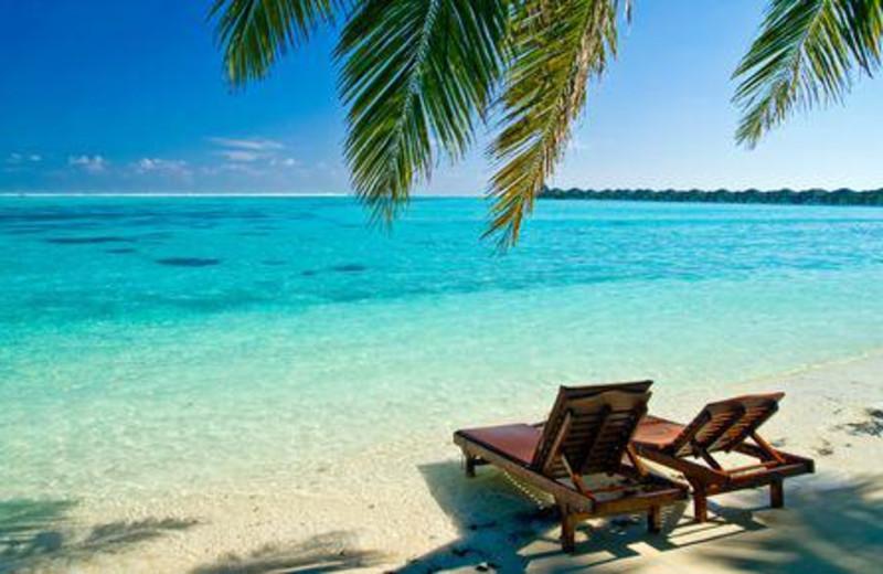 The beach at El Taj Oceanfront & Beachside Condo Hotel.