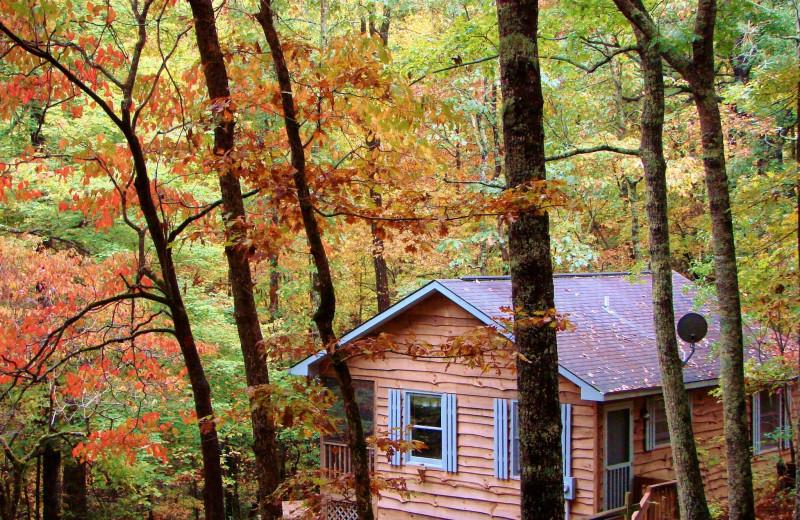 2BR cabin