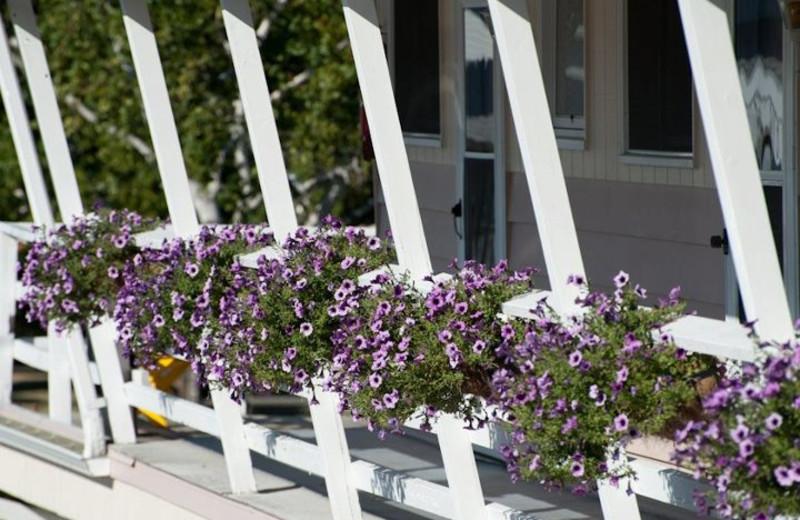 Porch Flowers at Beachfront Inn