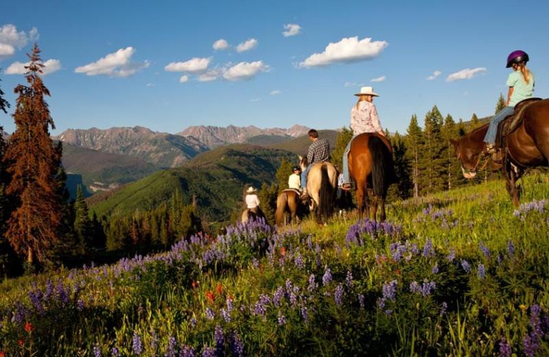 Horseback riding at Grand Timber Lodge.
