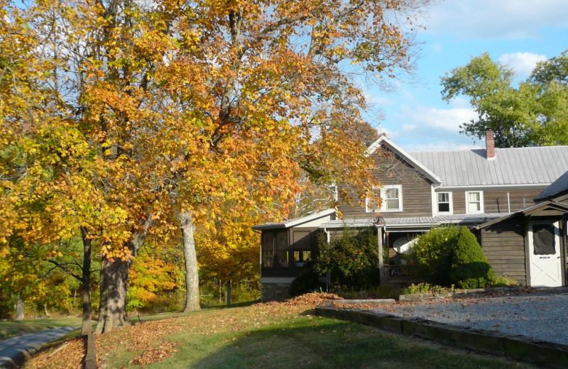 Fall foliage at Creekside Resort.