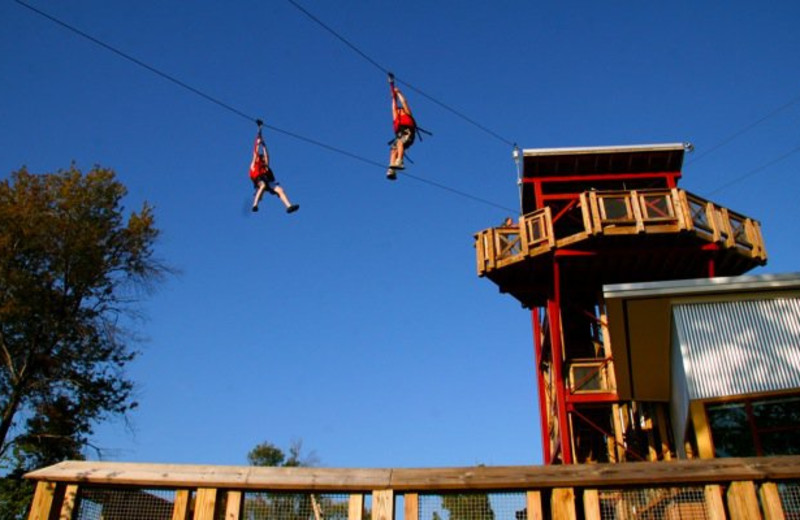 Zip Line at NorthBay