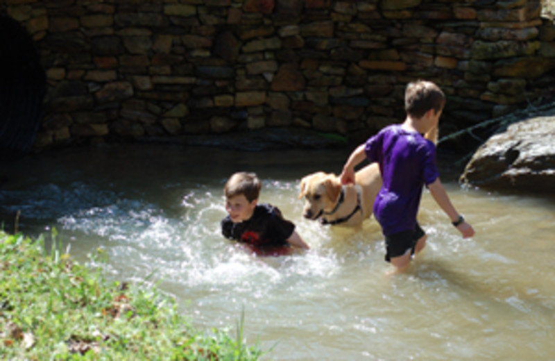 Playing in the creek at  Little Valley Mountain Resort