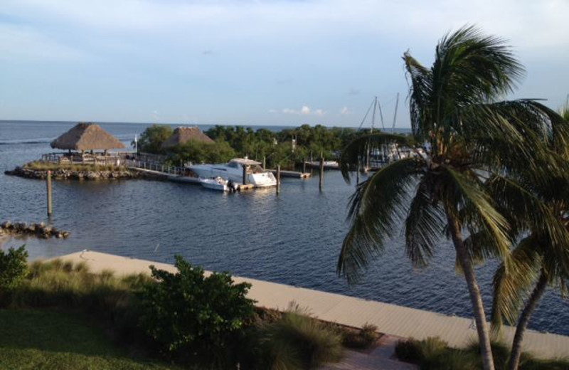 View from Boyd's Key West Campground Inc.