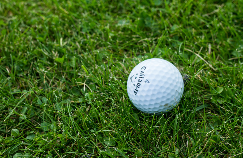 Golf near Whitetail Lodge.