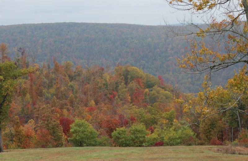 Fall colors at Saddleback Lodge.