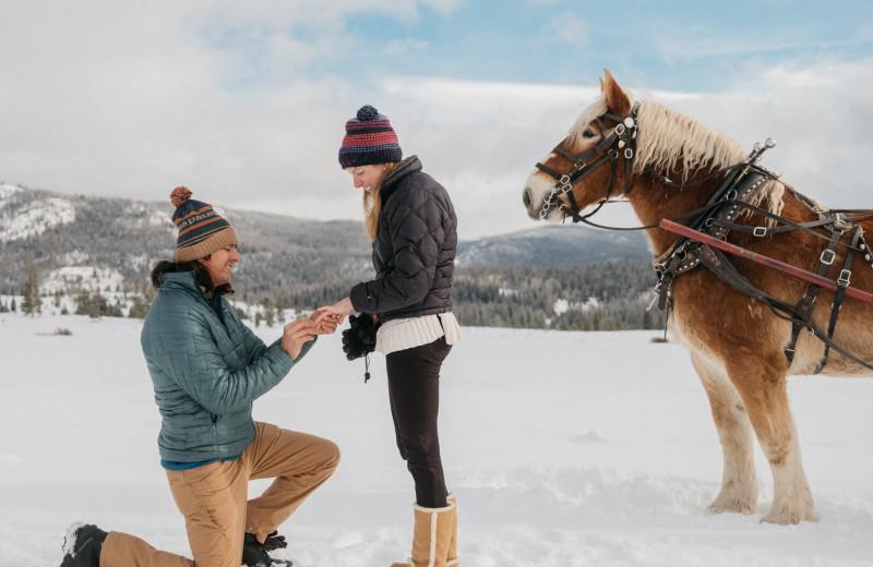 Marriage proposal at Vista Verde Ranch.